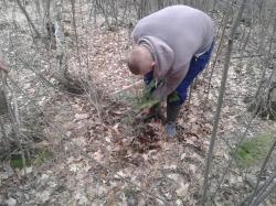 Побудова смуги перешкод та висадження дерев - с.Підбереж